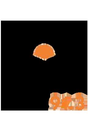 KSVY 91.3 FM Logo