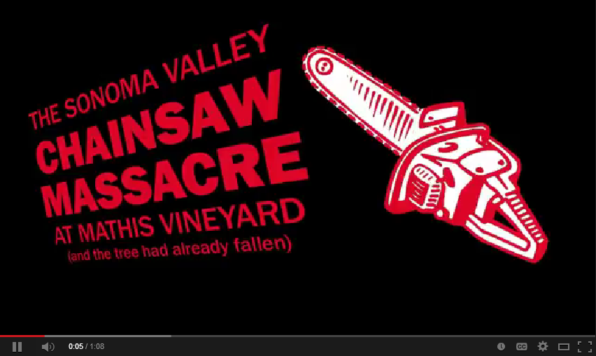 Sonoma Valley Chainsaw Massacre in Mathis Vineyard