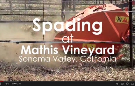 Tractor Chronicles-Spading at Mathis Vineyard